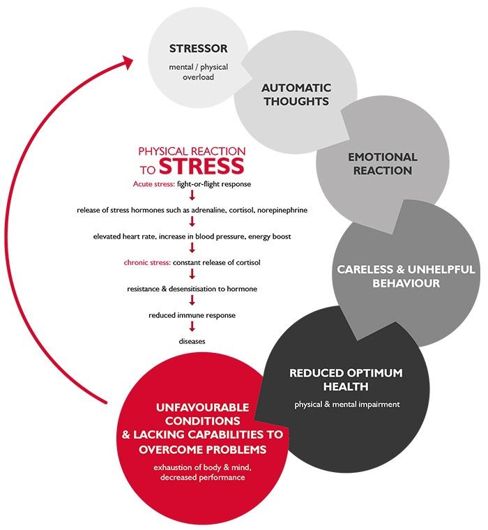 Stress Factors Flow Chart
